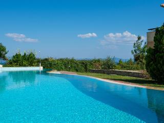 Cosy Lux Pool Villa in Afytos (3BD) - Afitos vacation rentals