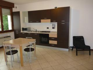 1 bedroom Condo with Internet Access in Goito - Goito vacation rentals