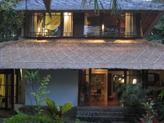 Perfect Villa with Internet Access and Dishwasher - Tejakula vacation rentals