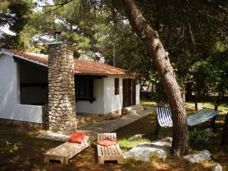 Nice House with Television and Balcony - Pakostane vacation rentals