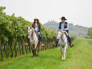 CASA COSTA RELAIS B&B Depandance - Monteforte d'Alpone vacation rentals