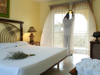 Confers Beach Tropical Junior Suite - Puerto Plata vacation rentals