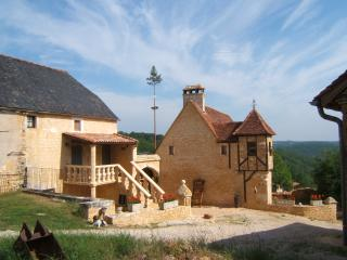 Romantic 1 bedroom Salignac-Eyvigues House with Internet Access - Salignac-Eyvigues vacation rentals
