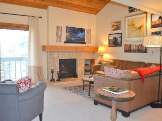 Sun Valley condo - 2 bedroom/ loft, 2 bathroooms - Sun Valley vacation rentals