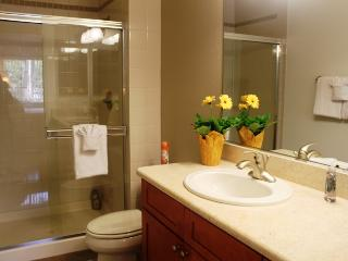La Jolla Executive Retreat - La Jolla vacation rentals