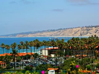 20% off WINTER SPECIAL - Pacific View - La Jolla vacation rentals