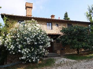 Lovely Villa with A/C and Wireless Internet - Montespertoli vacation rentals