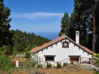 Tenerife cottage ideal for Hiking,  Birding and Stargazing - Icod de los Vinos vacation rentals