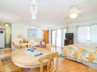 Large Spacious Studio - 5 Min Walk to Kailua Beach - Kailua vacation rentals