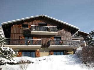Nice Condo with Internet Access and Television - Aillon-le-Jeune vacation rentals