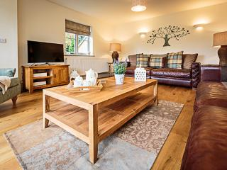 Rivercatcher - Cilan Farmhouse - Bala vacation rentals