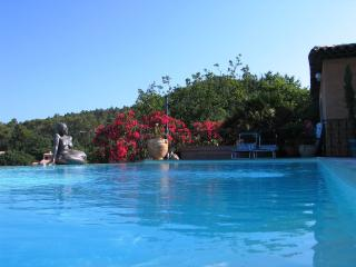 Nice Gite with Internet Access and Shared Outdoor Pool - Rocbaron vacation rentals