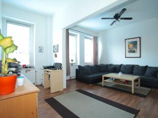 ID 5273 | 2 room apartment | WiFi | Laatzen - Isernhagen vacation rentals