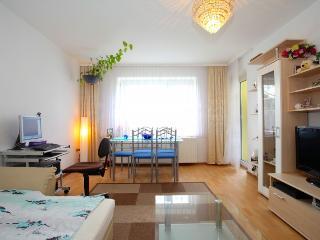 ID 5200 | 3 room apartment | WiFi | Laatzen - Laatzen vacation rentals