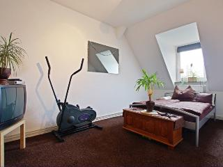ID 4767 | 2 room apartment | WiFi | Laatzen - Laatzen vacation rentals