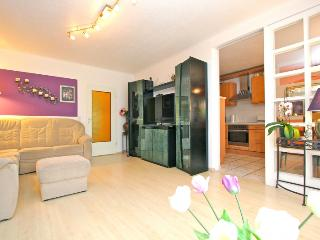 ID 4611 | 3 room apartment | WiFi | Laatzen - Laatzen vacation rentals