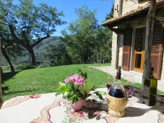 Beautiful Farmhouse Barn in Dicomano with Central Heating, sleeps 4 - Dicomano vacation rentals