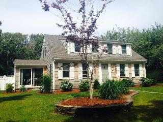 Exceptional home near Allen Harbor custom pool - West Harwich vacation rentals