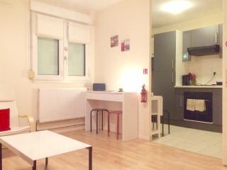 beau studio meublé à besançon - Franche-Comte vacation rentals