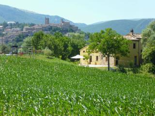 Stunning Villa & view 1k to great medieval village - Sarnano vacation rentals