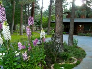 Pet Friendly Lodge Style Log Home with AC & WiFi - Sisters vacation rentals
