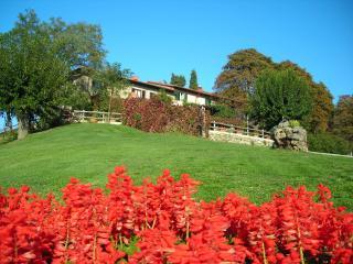 Belvedere - Dicomano vacation rentals