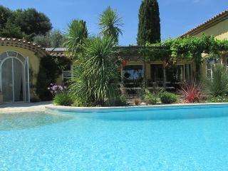 Villa avec piscine et jardin exotique - Valbonne vacation rentals