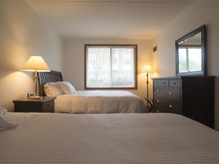 Modern 2 Bedroom Suite – Sleeps 8 - Minneapolis vacation rentals