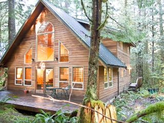 Snowline Fern Chalet, Pet Friendly, Hot Tub, Beautiful Wooded Lot, Fireplace - Glacier vacation rentals