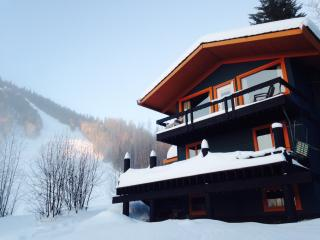 Ski In / Ski Out cabin / house from $200 Burfield - Sun Peaks vacation rentals