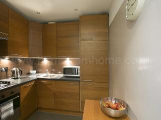 Smart and spacious studio apartment with great transport links- Shepherd's Bush - London vacation rentals