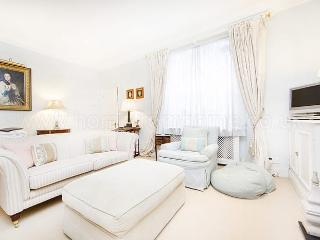 Super convenient holiday rental within walking distance to Victoria - London vacation rentals