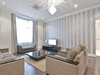 3Bed/3Bath Apartment w/ Free Daily Maid Cleaning - London vacation rentals