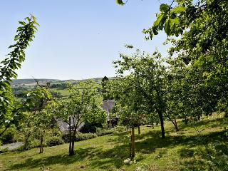 Comfortable 1 bedroom Clun Cottage with Internet Access - Clun vacation rentals