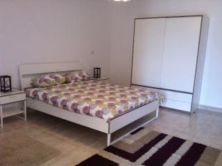 Cosy Modern Apartment In Cairo, Al Rehab City - Cairo vacation rentals