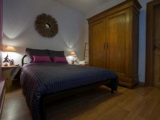"Apartment ""La Petite Venise N°4"" - Colmar vacation rentals"