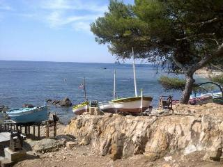 LOU NIOU acces direct mer - La Seyne-sur-Mer vacation rentals