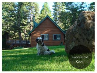Fools Gold Cabin: Peaceful 10 acres, Sierra views - Grass Valley vacation rentals