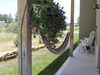 $50 Gas Card -Brand New Luxury Rental with Hot Tub - Pagosa Springs vacation rentals