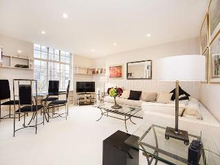 A superbly located studio in the heart of bustling Chelsea - London vacation rentals