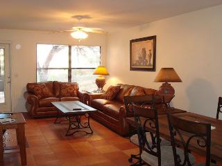 Hacienda in the Desert!  Mountain Views and flair of the Southwest! - Tucson vacation rentals