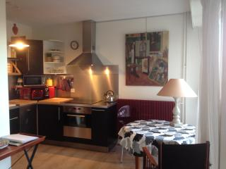 Large studio near BASTILLE with parking . - Paris vacation rentals