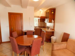 Novalja apartment for 5pax - Frane 3 - Novalja vacation rentals
