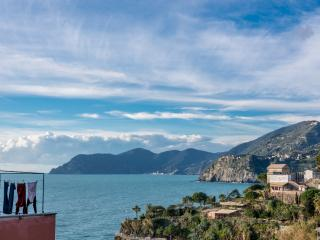 Nice Condo with Central Heating and Stove - Manarola vacation rentals