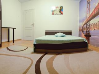 (website: hidden) Apartment 41, Kaunas - Kaunas vacation rentals