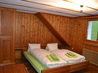 Bright 6 bedroom House in Wildhaus - Wildhaus vacation rentals