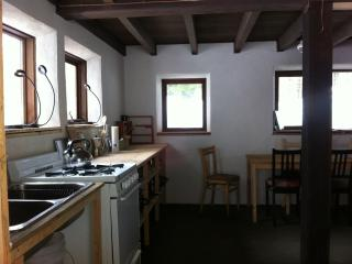 Nice Cottage with Internet Access and Porch - Kaslo vacation rentals