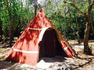Do you want to Camp or Glamp we have both - Guayabo vacation rentals