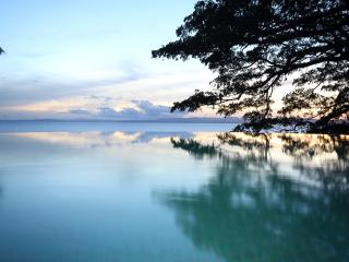 The House of Bamboo, worlds top 10 infinity pool - Vanua Levu vacation rentals