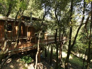Chalet - cabane intégré dans les arbres tt confort - Chisa vacation rentals
